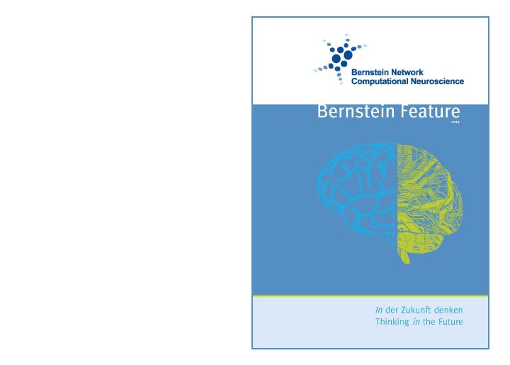 Bernstein Netzwerk  Bernstein Feature 2019