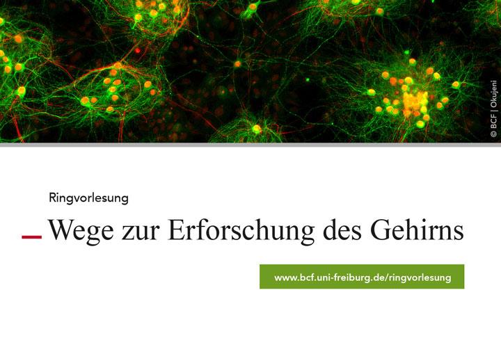 """Bernstein Center Freiburg   Press Release """"Ringvorlesung"""""""
