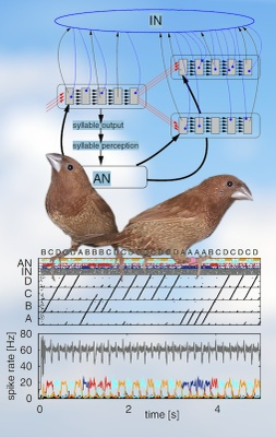 A model of song syntax generation in the Bengalese finch