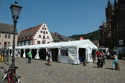 Science Fair 2013
