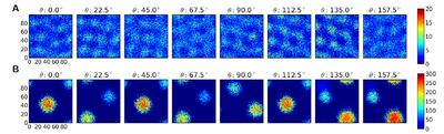 Heterogeneous networks underlie functional heterogeneity