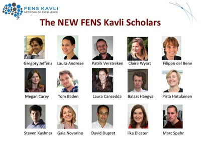 Putting young scientists in the driver's seat: Freiburg researcher Ilka Diester to become FENS-Kavli Scholar