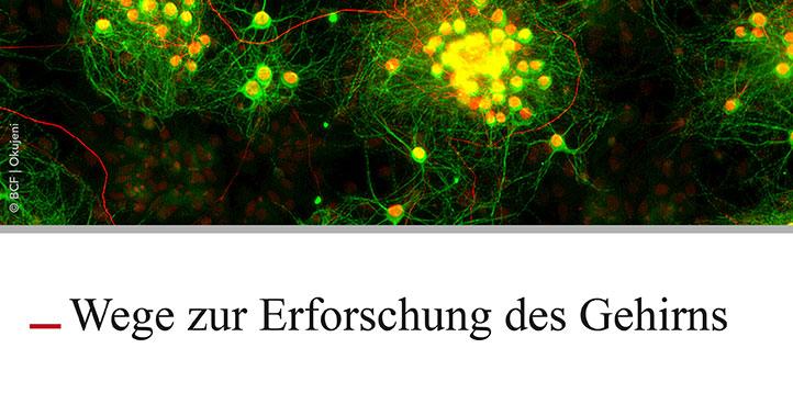 """Ringvorlesung """"Wege zur Erforschung des Gehirns"""""""